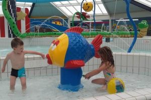 Fish-Handpump_Pooljoy-web