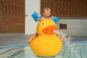 Pooljoy-Duck