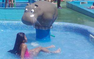Pooljoy-Hippo-Handpump