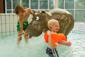 Pooljoy_Hippo2